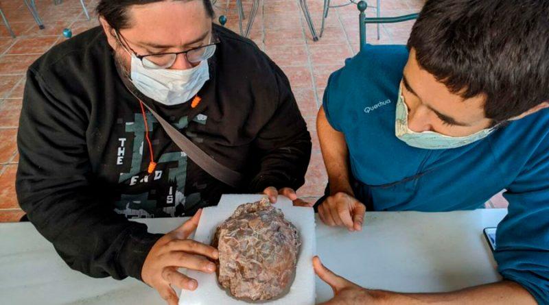 Descubren en España uno de los mayores yacimientos de huevos de dinosaurio del mundo