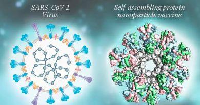Vacuna contra COVID-19 hecha con nanopartículas genera respuesta inmune en pruebas preclínicas