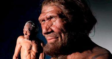 La mezcla temprana con humanos cambió el cromosoma Y en neandertales