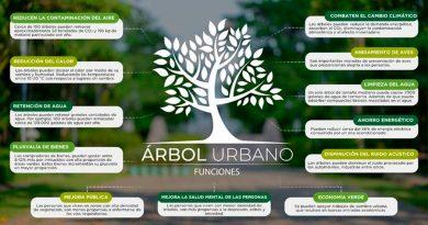 La contaminación ambiental en la vegetación urbana y sus repercusiones sociales