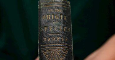 La mitad de los universitarios no conoce la Teoría de la Evolución de Darwin