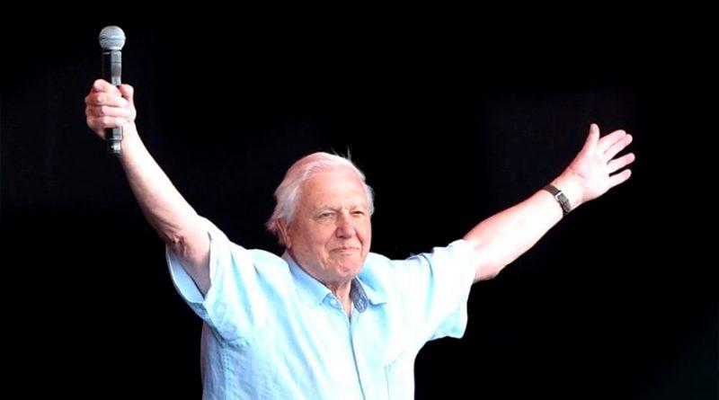 David Attenborough: el naturalista y estrella de TV de 94 años que bate récords en Instagram
