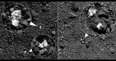 Descubren trozos brillantes de unos asteroides entre el material oscuro de otros
