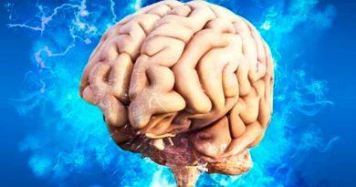 Cerebro humano congela el tiempo para facilitar toma de decisiones