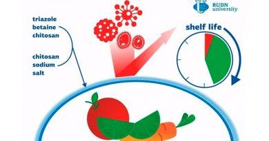 Un nuevo envoltorio antibacteriano biodegradable protege de 2.5 a 8 veces más los alimentos