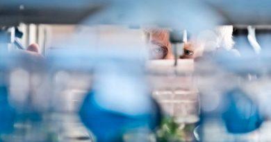 Descubren cómo regenerar las neuronas del ojo y del cerebro