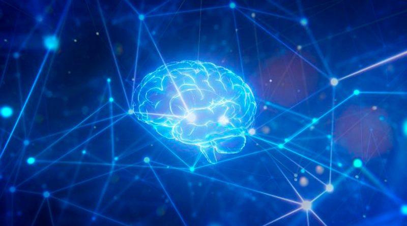 Cómo saber si tu cerebro está desactualizado