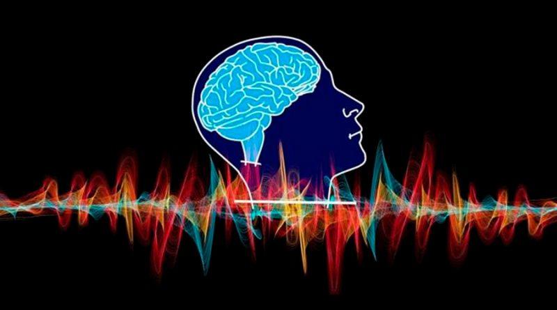 El cerebro cambia cuando conocemos nuevas personas o lugares