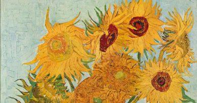 La ciencia explica por qué Van Gogh pintaba tanto con amarillo