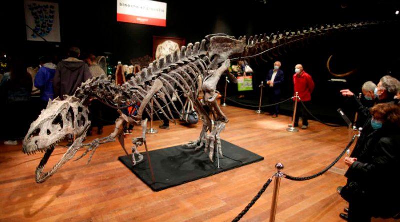El esqueleto de un alosaurio, vendido por más tres millones de euros