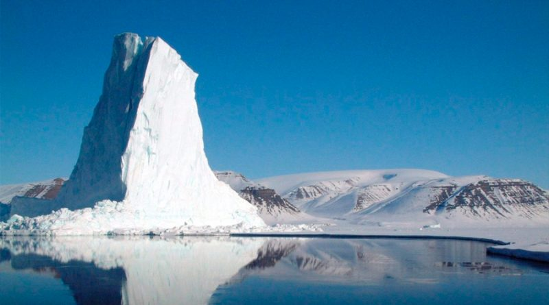 Supervivencia ártica: el fitoplancton sigue creciendo sin luz y bajo el hielo en invierno