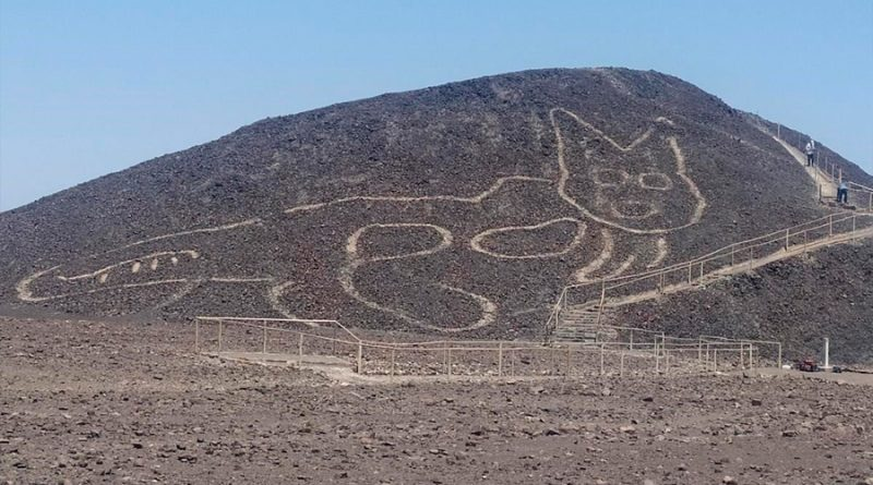 Un gato de 37 metros: el nuevo geoglifo hallado en Nazca (Perú)