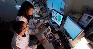 Descubren un mecanismo que protege a las células del envejecimiento prematuro