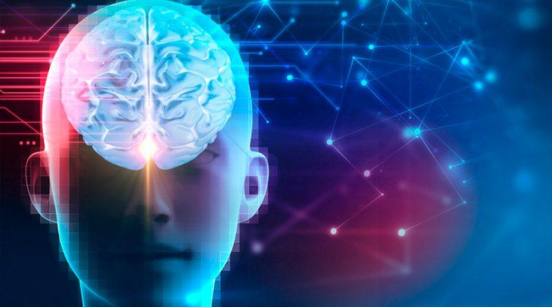 Descubren cómo el cerebro reconoce los objetos