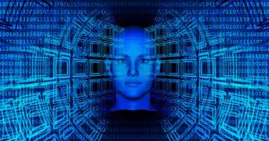 El cerebro y los ordenadores ven el mundo de la misma manera