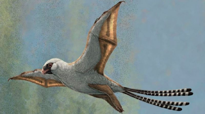 Estudio revela que pequeños dinosaurios desarrollaron la capacidad de planear