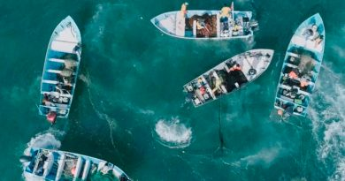 Gana premio proyecto de FES Aragón para salvar a vaquita marina
