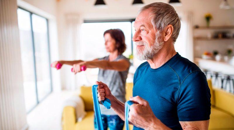 Descubren cómo se regeneran los músculos después del ejercicio