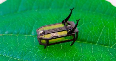 Crean un robot escarabajo para usar en lugares inaccesibles: no usa batería, repta y pesa 88 miligramos