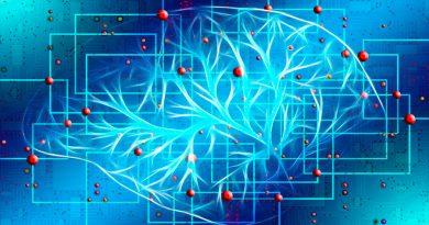 Las neuronas se comunican cantando