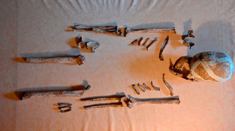 """Descubren en Alemania a la """"dama de Bietikow"""", osamenta de más de 5.000 años"""