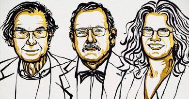 Los Premios Nobel de Física 2020