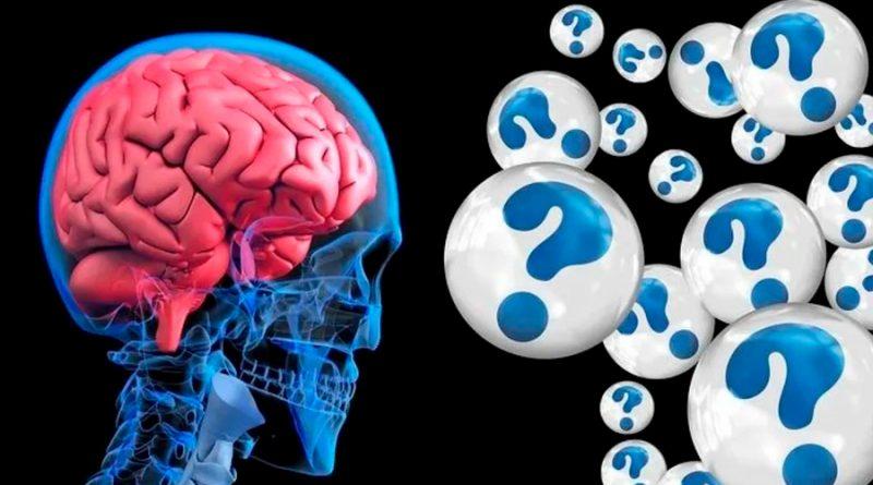 UNAM crea el primer banco de cerebros de México: El BioBanco Nacional de Demencias