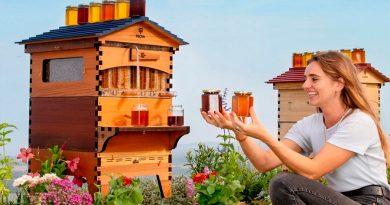 Flow Hive, la colmena con grifo para no molestar a las abejas