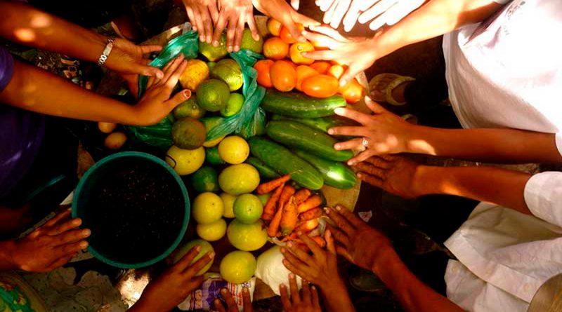 Premian proyectos que potencian la seguridad alimentaria y la sustentabilidad en México
