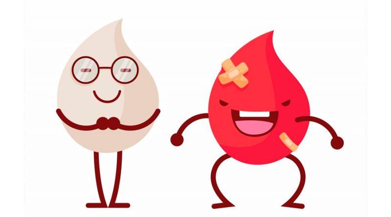 Investigadores entrenan a los glóbulos blancos para que ataquen las células tumorales