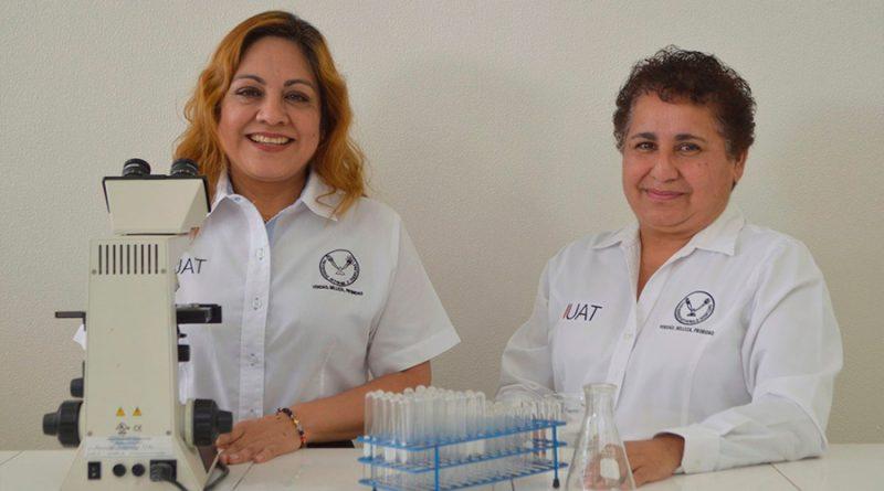 Investigadoras mexicanas fabrican papel con cáscara de cebolla