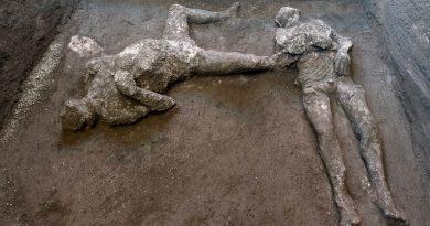 Desentierran los cuerpos de un amo y un esclavo que intentaban huir de la erupción en Pompeya