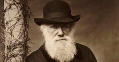Misteriosa desaparición de El árbol de la vida que dibujó Charles Darwin, perdido desde hace 20 años