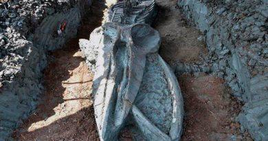 Descubren el fósil casi intacto de un cetáceo de tres mil años cerca de Bangkok