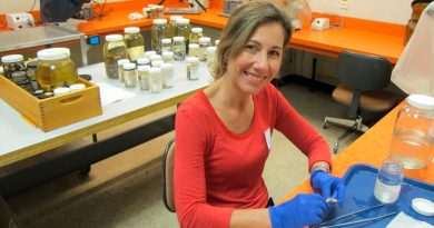 La desaparición de los anfibios es considerada la sexta extinción masiva de la biodiversidad del planeta: Patricia Burrowes