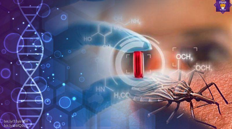 Expertos de la UNAM producen nanopartículas contra enfermedad de Chagas