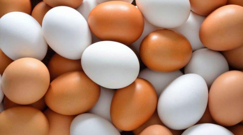 8 datos fascinantes sobre los huevos, uno de los alimentos más nutritivos del mundo