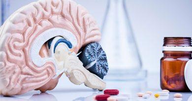 Descubren un nuevo mecanismo de entrada de fármacos al cerebro