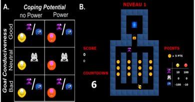 Un videojuego descubre cómo el cerebro procesa las emociones