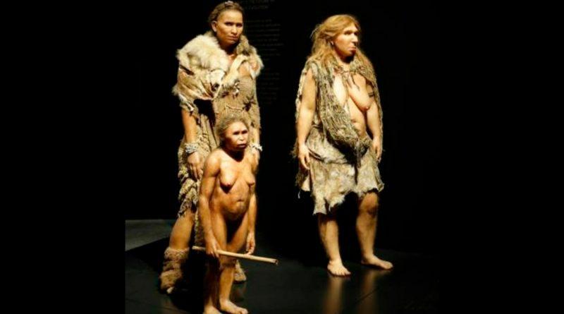 Refuerzan teoría sobre neandertales que enterraban a sus muertos