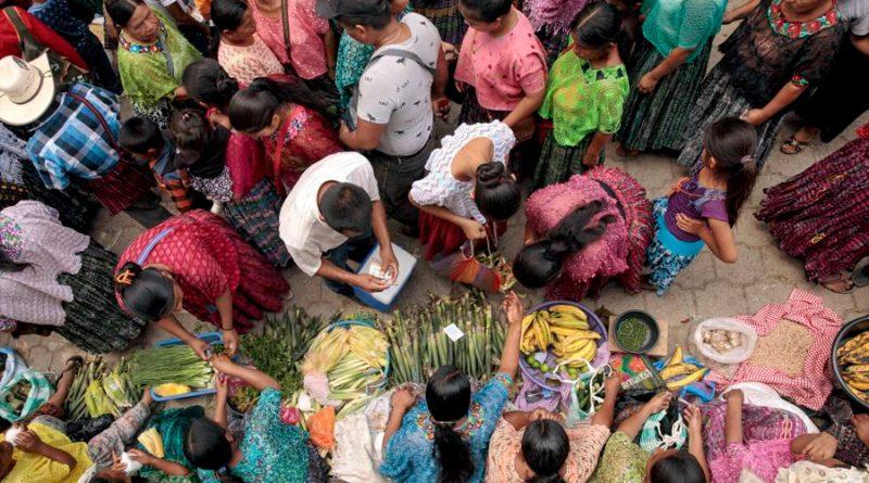 Las cadenas productivas: clave para superar la pobreza