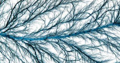Empiezan a desvelar el enigma de los nanocables microbianos que transportan electrones