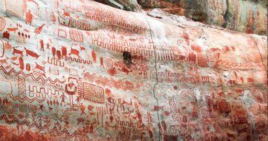 Descubren miles de pinturas rupestres de hace 12.000 años ocultas en el Amazonas, con animales ya extinguidos