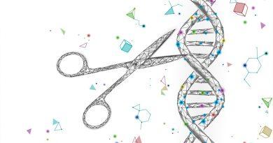Premio Nobel 2020 a la tijera molecular: CRISPR/Cas9