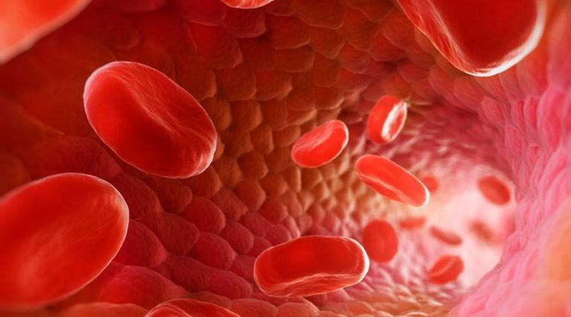 Crean tecnología para navegar por dispositivos electrónicos dentro de los vasos sanguíneos
