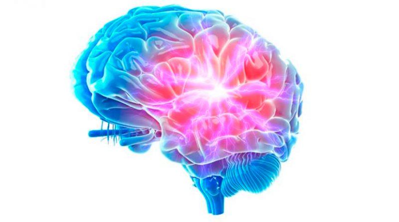 Investigadores de Yale descubren dónde vive el estrés en el cerebro