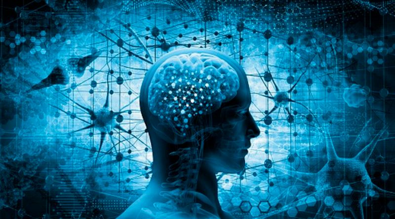 """6 formas de """"reiniciar tu cerebro"""" tras un año difícil de covid-19"""