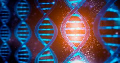 Activan y desactivan el ADN utilizando luz