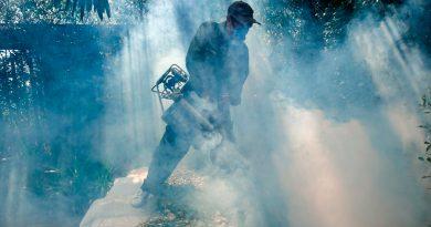 Científicos descubren nuevos químicos que matan al parásito de la malaria