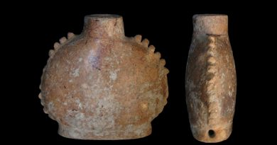 Revelan hallazgos sobre más sustancias sicoactivas usadas por los mayas